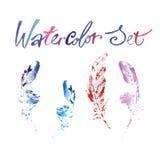 Plumas delicadas hermosas pintadas en acuarela libre illustration