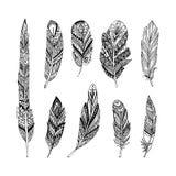 Plumas dibujadas mano del vector en estilo del boho Aislado en el fondo blanco stock de ilustración