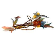 Plumas indias Imagen de archivo libre de regalías
