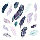 Plumas oscuras y de color claro Fotografía de archivo libre de regalías