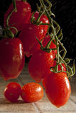 Plumb Tomato on the vine stock images