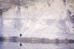 Plumbeous νερό-Redstart Στοκ φωτογραφίες με δικαίωμα ελεύθερης χρήσης