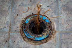 Plumbing Problem Toilet Flange Roots Stock Photo