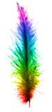 Plume colorée Image libre de droits