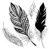 Plume décorative sans paire de vecteur Images libres de droits