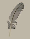 Plume d'oiseau noire dessinée dans l'illustration de vecteur illustration libre de droits