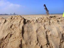 Plume d'oiseau sur le sable Photos libres de droits