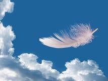 Plume de flottement au-dessus de ciel - légèreté, concept de liberté Photo libre de droits