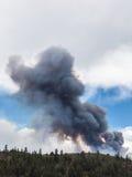 Plume de fumée du feu de forêt Image stock