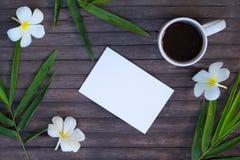 Plumeria και μπαμπού γύρω από τη Λευκή Βίβλο Τροπική γαμήλια πρόσκληση Έμβλημα ομορφιάς με τη θέση κειμένων Στοκ φωτογραφίες με δικαίωμα ελεύθερης χρήσης