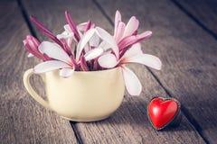 Plumeria στο φλυτζάνι με τη μορφή καρδιών Στοκ Εικόνες