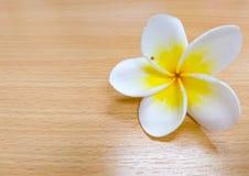 Plumeria, το άσπρο και κίτρινο λουλούδι που βρίσκεται στον ξύλινο πίνακα Στοκ Εικόνα