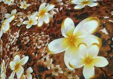 Plumeria Fotografie Stock