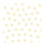 Plumeria bakgrundsillustration Arkivbild