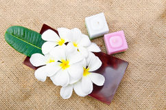Plumeria blossom and leaves on wood dish and candles Royalty Free Stock Photos