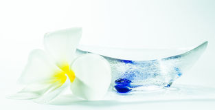 Plumeria and Bowl Royalty Free Stock Photo