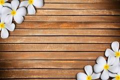 Plumeria en la madera Fotos de archivo libres de regalías