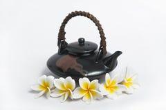 Plumeria filiżanka herbata Obrazy Stock