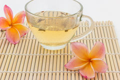 Plumeria flower and  cup of tea Stock Image