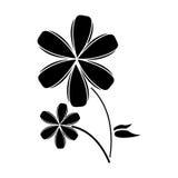 Plumeria flower decoration pictogram Royalty Free Stock Images