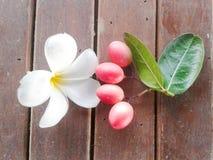 Plumeria flower and karonda Stock Image