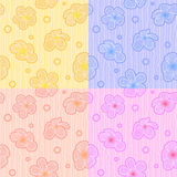 Plumeria flower pattern background Royalty Free Stock Images