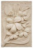 Plumeria Flower Stucco Stock Photo