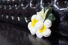 Plumeria flower stucco on the black leather sofa. Molded lime of frangipani flower. stock photos