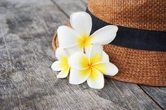 Plumeria flower on woven hat Stock Photography