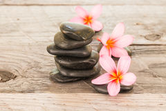 Plumeria Flowers And Black Stones Wooden Background Stock Image