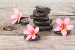 Plumeria flowers and black stones on weathered wood Royalty Free Stock Photo