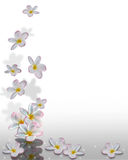 Plumeria Flowers Corner Design Royalty Free Stock Photography