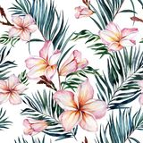 Plumeria flowers and exotic palm leaves in seamless tropical pattern. White background. Watercolor painting. Hand drawn and painted floral illustration. Fabric stock illustration