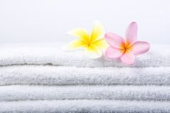 Plumeria Flowers On White Towel Royalty Free Stock Images