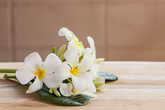 Plumeria flowers on wooden table and grunge texture backgrounds Stock Photography