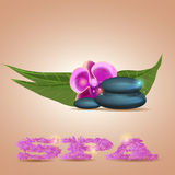 Plumeria flowers and Zen stone Royalty Free Stock Photo