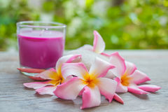 Plumeria (Frangipani) flowers, Purple candles in glass and spa stone on wooden background. Stock Image