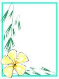 Plumeria gialla Border2 Fotografia Stock Libera da Diritti