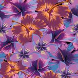 Plumeria hibiscus abstract color seamless. Tropical exotic flowers plumeria and hibiscus abstract color seamless. Vector pattern wallpaper Royalty Free Stock Images