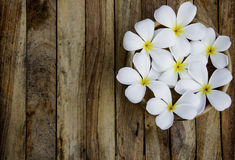 Plumeria op de houten vloerachtergrond Stock Afbeelding