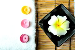 A plumeria in the plate Royalty Free Stock Photography