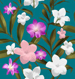 Plumeria seamless pattern. Seamless floral patterns with Plumeria pudica flower Stock Photo