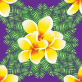 Plumeria seamless vector pattern palm leaves. Royalty Free Stock Photos