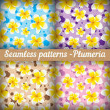 Plumeria Set nahtlose Muster floral Stockbilder