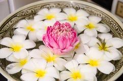 Plumeria spa bloemen over water met roze lotusbloem Stock Fotografie