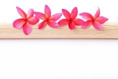 Plumeria su una stuoia di bambù rotolata Fotografia Stock