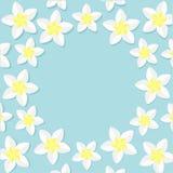 Plumeria Tropical flower icon set. Frangipani  Stock Photos