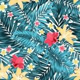 Plumeria tropical sem emenda do hibiscus do lírio das folhas Imagens de Stock