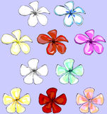 Plumeria Vector Set Royalty Free Stock Photography