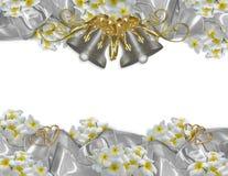 Plumeria wedding bells and satin ribbons borders royalty free stock photos